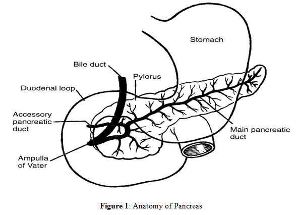 Laboratory Diagnosis Of Pancreatic Disease
